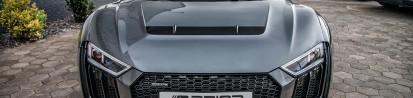 PD800 Motorhaube mit Lufteinlass Audi R8 4S Coupe/Spyder